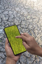 Smartphone in hans display show green rice field on a dry and cracked earth background Royalty Free Stock Photo