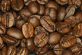 The smell of coffeebeans this handfull in morning is a joy for senses and taste it Royalty Free Stock Photography