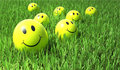 Smile yellow on the grass Stock Images