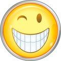 Smiles Royalty Free Stock Photo
