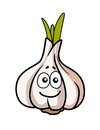 Smiley faced garlic bulb cartoon illustration of a whole fresh with a cute face on one of the cloves isolated on white Stock Images