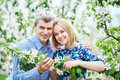 Smiling adult couple portrait in blossoming apple tree garden Royalty Free Stock Photo