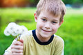 Smiling boy with dandelions Royalty Free Stock Photo