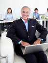 Smiling businessman using a laptop Royalty Free Stock Photos