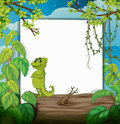 A smiling chameleons and a white board illustration of in beautiful nature Royalty Free Stock Photos