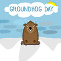 Smiling character of woodchuck on winter background. Happy