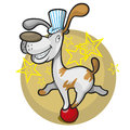 Smiling circus dog on the ball Royalty Free Stock Photos