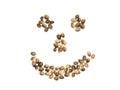 Smiling face of hemp seeds