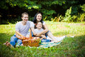 Smiling family on picnic having a park meadow Stock Photos