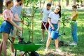smiling friends planting new trees and volunteering Royalty Free Stock Photo