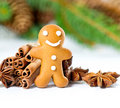 Smiling gingerbread man with christmas spices Royalty Free Stock Photo