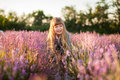 Smiling girl  in a lavender field. Royalty Free Stock Photo