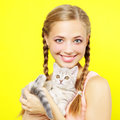 Smiling girl with Scottish kitten Royalty Free Stock Photos