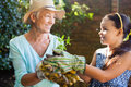 Smiling granddaughter and grandmother holding seedling Royalty Free Stock Photo