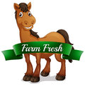 A smiling horse with a farm fresh label illustration of on white background Stock Photo