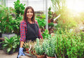 Smiling horticulturalist working in a greenhouse young female at nursery standing at table displaying potted plants at Stock Image