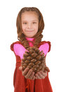 Smiling little girl shows big pine cones beautiful in pink dress isolated on white background Royalty Free Stock Image