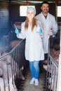 Smiling male farmer and female veterinarian Royalty Free Stock Photo