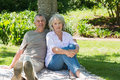 Smiling mature couple sitting against a tree at park portrait of the Stock Photo