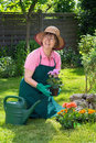 Smiling middle aged woman gardening. Royalty Free Stock Photo