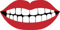 Smiling mouth showing wihite teeth Royalty Free Stock Photos
