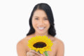Smiling natural model holding sunflower in her hand on white background Stock Photography