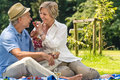Smiling pensioner couple picnicking summer in the park sunny day Royalty Free Stock Photo