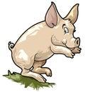 Smiling pig. Cartoon style