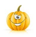 Smiling ripe orange pumpkin