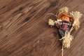 A smiling scarecrow Royalty Free Stock Photo