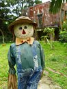 Smiling scarecrow standing in green field Royalty Free Stock Images