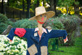 Smiling scarecrow in a vegetable garden in a countryside. Royalty Free Stock Photo
