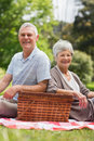 Smiling senior couple with picnic basket at park Royalty Free Stock Photos