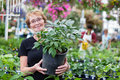 Smiling senior woman holding potted plant Stock Photo
