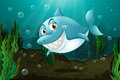 A smiling shark lllustration of Stock Photography