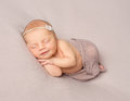 Smiling sleeping newborn girl covered with shawl Royalty Free Stock Photo