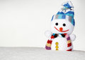 Smiling snowman Royalty Free Stock Photos