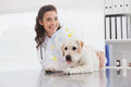Smiling vet and dog with a cone Royalty Free Stock Photo