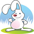 Smiling White Rabbit Stock Photography