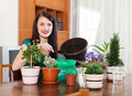 Smiling woman transplanting flowers plant in flowerpot at home Stock Photos