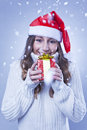 Smiling young Christmas woman with a gift Royalty Free Stock Photography