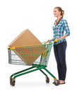Smiling young woman with shopping cart Stock Image