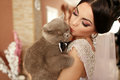 The smilling bride keeps her cat Royalty Free Stock Photo