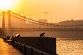 Smog in moscow russia thursday nov weather sun s and frost the temperature is rather cold up to c f either Royalty Free Stock Images