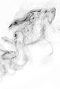 Smoke-shaped Monster,white background Royalty Free Stock Photo