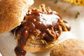 Smoked barbecue pulled pork sliders with sauce Stock Photos