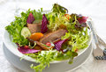 Smoked duck with pomegranate salad Royalty Free Stock Images
