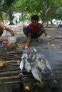 Smoked fish fishermen cook for lunch at cemara island karimun islands central java indonesia Royalty Free Stock Image