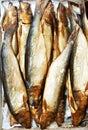 Smoked herring fish Royalty Free Stock Photo