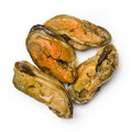 Smoked mussels Royalty Free Stock Photo